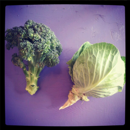 broccoli 2013