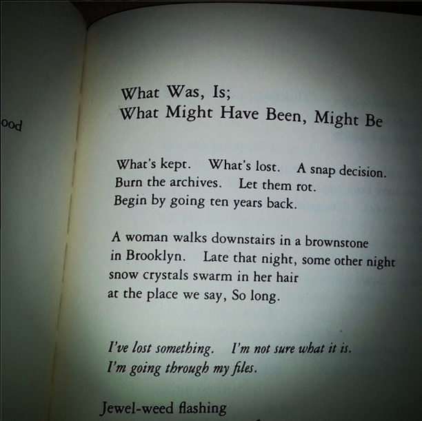 A snapshot of a page inside my copy of  Adrienne Rich's Your Native Land, Your Life
